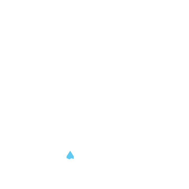 Logo RaySecur