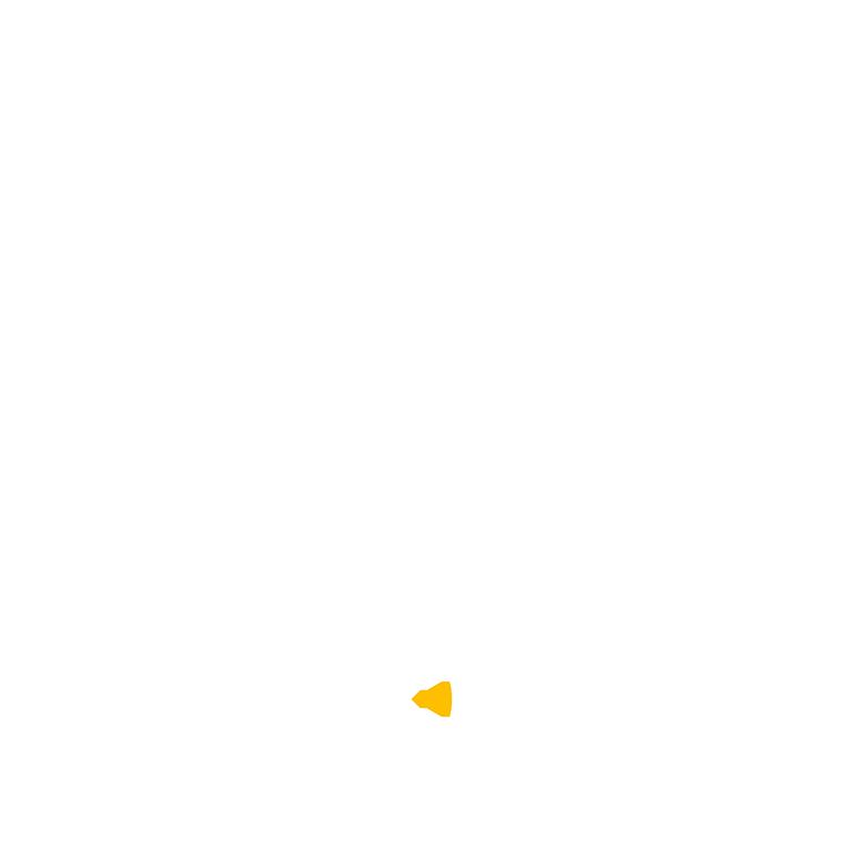 Logo IOT Express