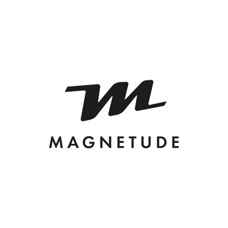 Logo Magnetude Sport